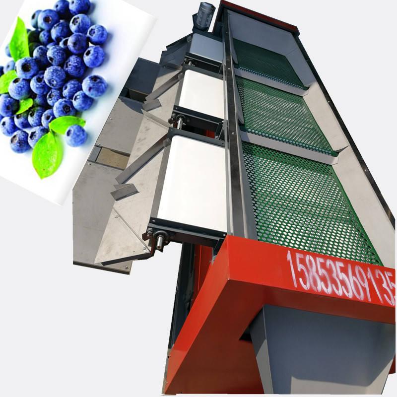 蓝莓分选机不伤果粉