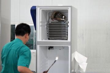 新城区冰箱维修专业商家