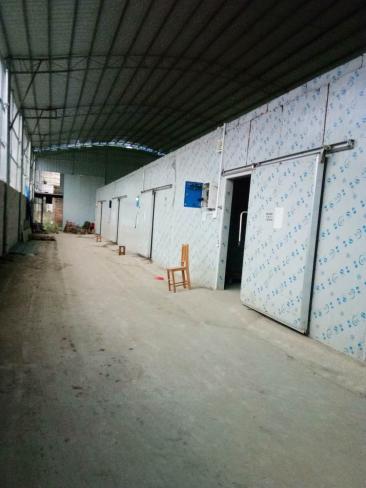 广西桂林冷库安装设计、冷库安装价格联系电话