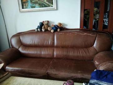 我们专业提供沙发翻新