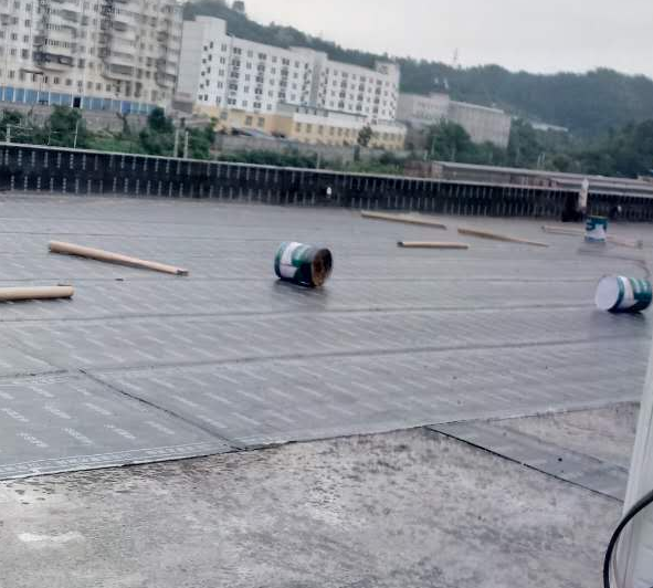 鹰潭大小房屋防水漏水堵漏工程