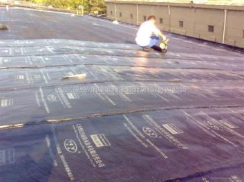 屋面与外墙长治防水补漏