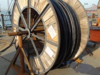 深圳价格实惠的矿物质电缆