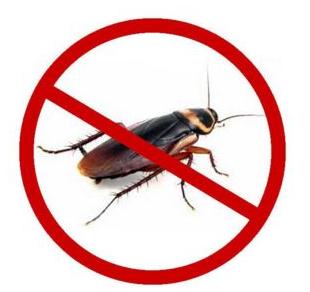海口专业灭蟑螂