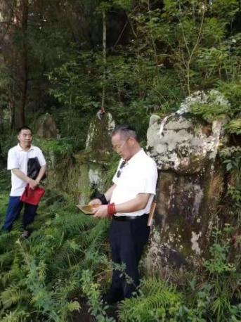 墓地风水项目服务-元翔老师