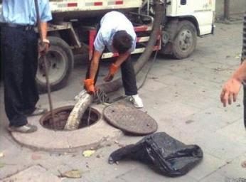 温州正规化粪池清理公司