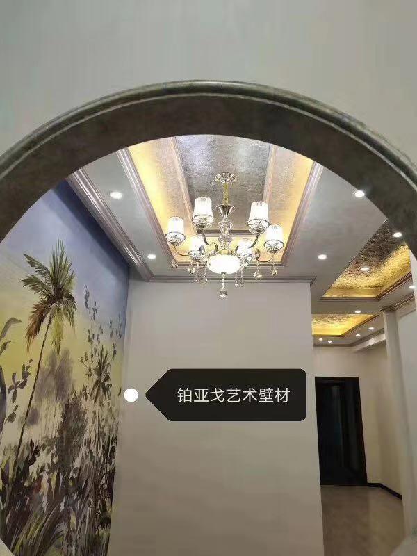 惠州室内外艺术涂料硅藻泥装修施工
