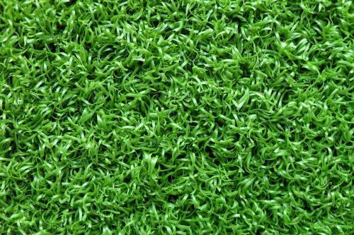 草种种植的好处