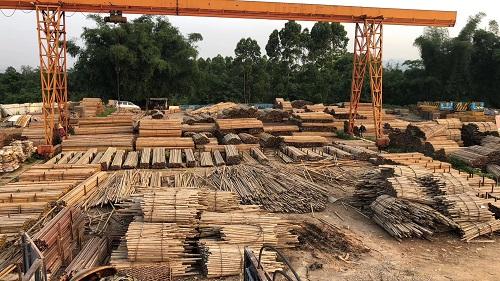 柳州经济实用的钢管租赁服务
