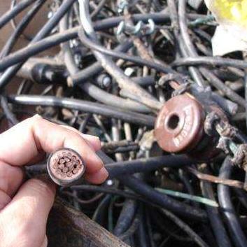 广州电缆回收 常年长期回收