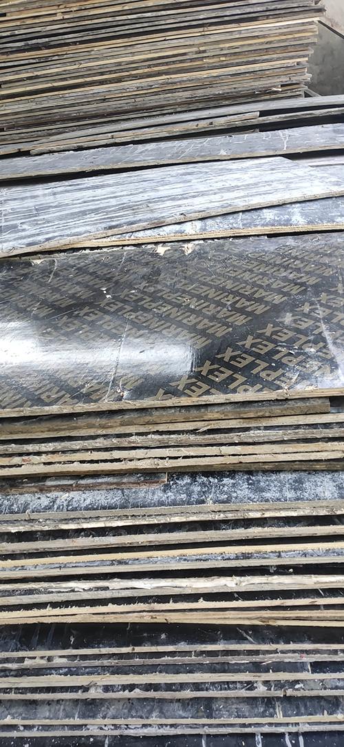 为什么杨木会方木模板的主要原材料