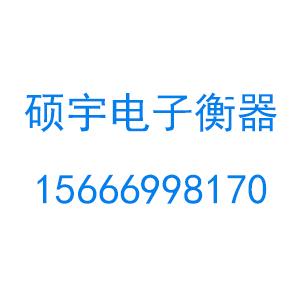 临沂硕宇电子衡器有限公司