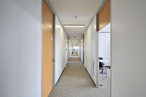 室内隔墙宜采用轻质砖做的隔墙