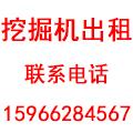 聊城市志硕挖掘机租赁有限公司