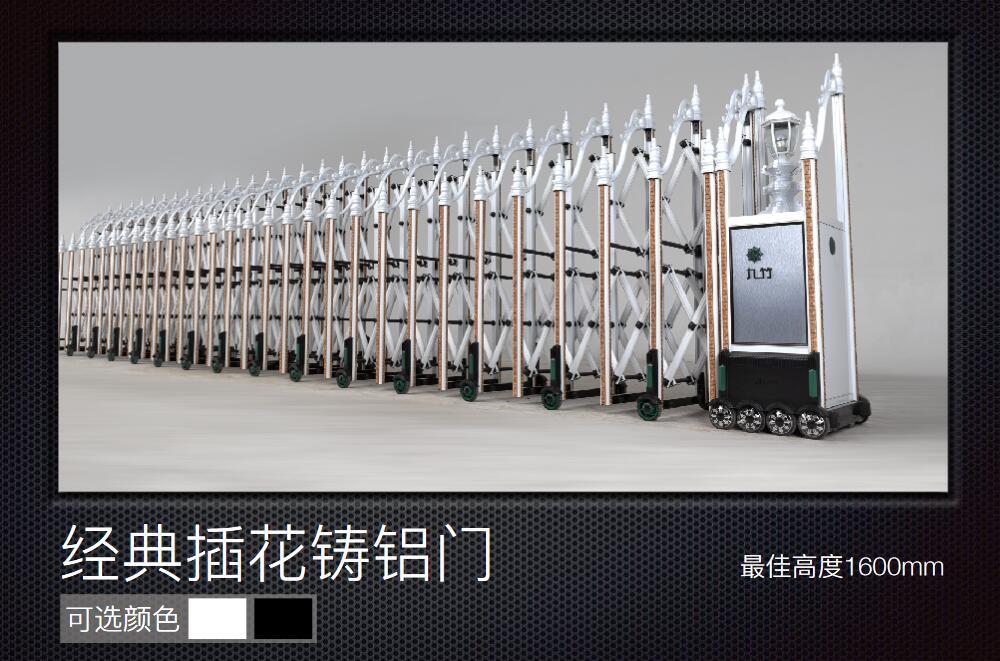 南京九竹经典插花铸铝门