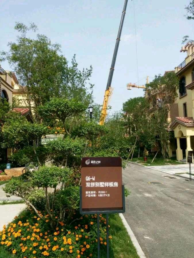 台州本地提供随叫随到的吊车租赁服务