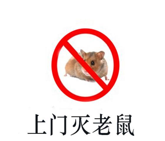 西安科学灭老鼠