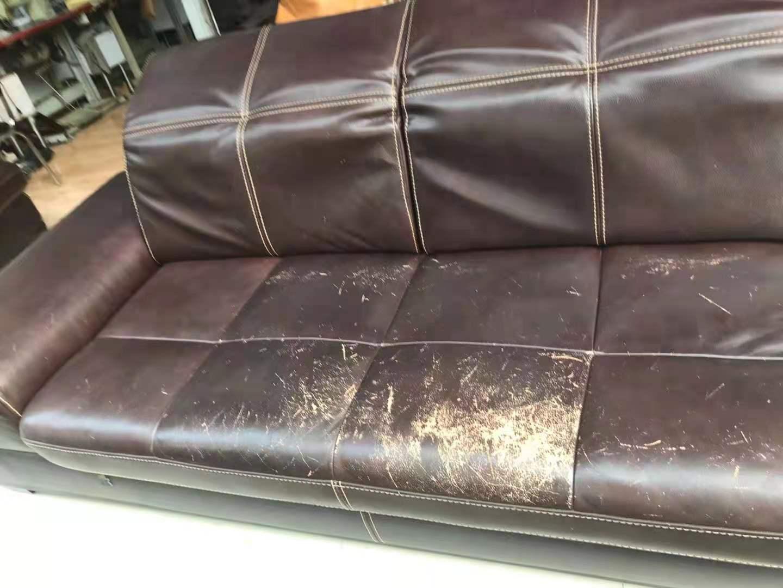 沙发有异味常见的原因